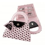 Handbag manicure set